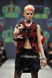 Micro pigs featured at Kirsten Korhani show - image sourced from the Korhani home Twitter gallery